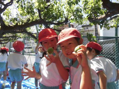 マツガネ台幼稚園