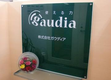 gaudia_002